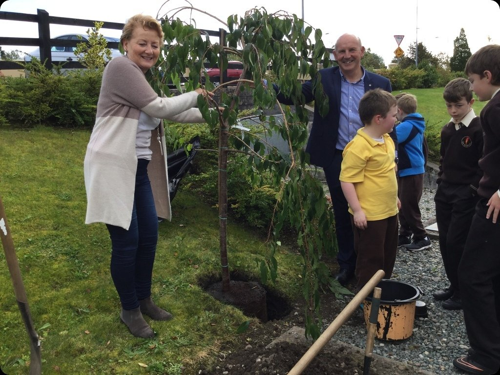 Mrs. Hakin returns to plant a tree
